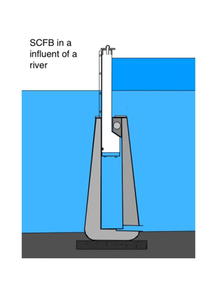 SCFB - In un corso d'acqua