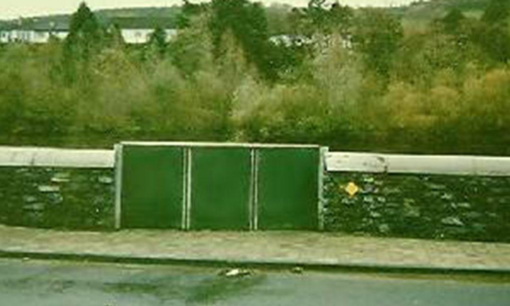 Carrick aan de Suur, Irlanda